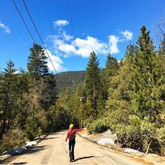 Dreaming of those days roaming free and adventures surrounded by nothing but nature  @mugglinstagram at Idyllwild California in our Black Velvet Flares. Shot by @spacefacemusic  #sunshine #bohemian #surf #california #californialove #love #earth #nature #gypsy #gypsysoul #dream #weekend #roadtrip #beetle #vw #summer #flares #bellbottoms #adventure #madeinmelbourne #idyllwild #explore #inspo #dream #fashion #design #hippie #gypsy #style