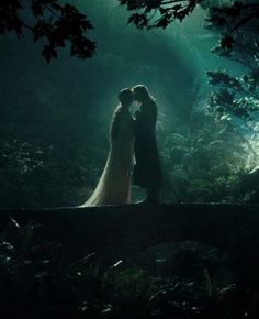 Can I have a relationship like this, please?  Arwen and Aragorn.