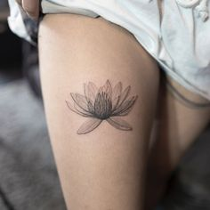 X-ray lotus flower by Hongdam