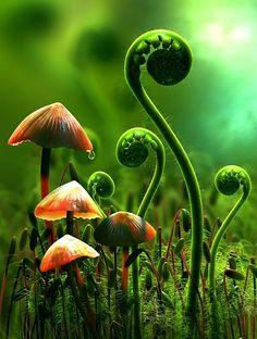 Bitkiler ne kadar büyüyecekleri konusunda kendilerini asla sınırlandırmazlar.