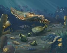Cambrian coral reef brimming with life. #Cambrian