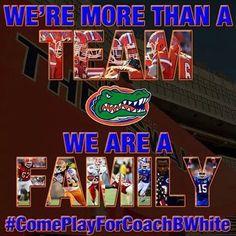 Save the image to your collection Fla Gators, Uf Gator, Nd Football, Florida Gators Football, Football Season, College Football, Baseball, Tim Tebow, Florida Girl