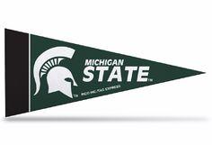 Michigan State Spartans Mini Pennants - 8 Piece Set