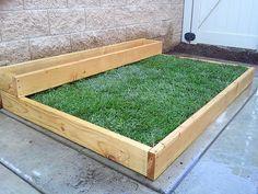 DIY: Grass over concrete http://changingmydestiny.wordpress.com/2011/09/27/planting-grass-on-concrete-part-1/