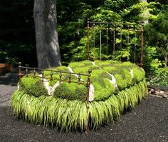 Oh my! A moss bed.
