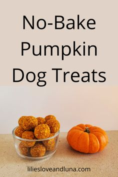 Easy 3 ingredient treats for your dog. No Bake Dog Treats, Peanut Butter Dog Treats, Baked Pumpkin, Pumpkin Spice, Knitting Patterns For Dogs, Pumpkin Dog Treats, Dog Treat Recipes, 3 Ingredients, Spices