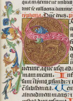 Schaffhausen, Ministerialbibliothek, Min. 99: Breviarium OFM (pars aestivalis) · 1460 (http://www.e-codices.unifr.ch/fr/list/one/sbs/min0099)