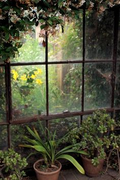 would love something like this to divide my garden in half, almost like looking through to another place <3