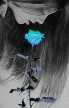 Beautiful colorful pictures and Gifs: Flowers photos Color Splash, Color Pop, Colour, Gifs, Beautiful Gif, Beautiful Pictures, Animation, Rosa Rose, Glitter Graphics