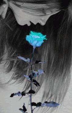 Galeria de fotos para tu blog o webpage: Flowers photos