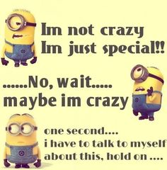 TOP 14 FUNNY MINION QUOTES – Minion Rules
