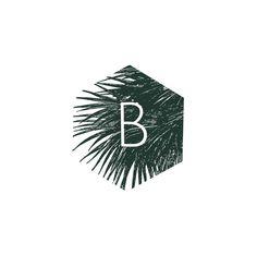 Bija Botanicals logo design wip from extrafin design