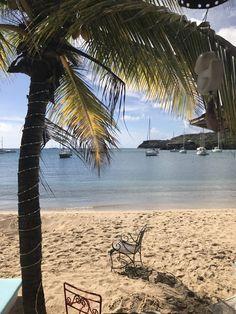 Cozy beach in Antigua - Travel Lover Pillars Of Hercules, Best Swimming, Snorkelling, Beach Bars, Colorful Fish, Caribbean, Most Beautiful, Cozy, Park
