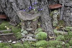 Faerie Houses at the Florence Griswold Museum | von Florence Griswold Museum