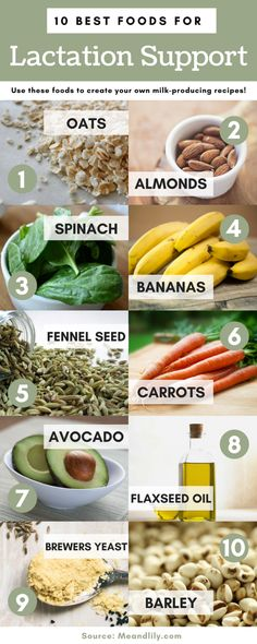 Lactation Support Infographic. 10 best foods for boosting milk supply. #lactationfoods #breastfeedingdiet