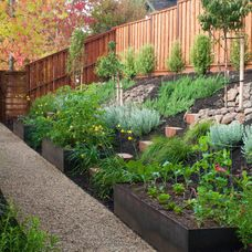 Build a banked border. Most plants are just as happy growing on slopes as in level beds, so try constructing flower beds that rise up from a path, creating a green, enveloping corridor. Small steps cut into the bank will give you access for weeding and pruning.