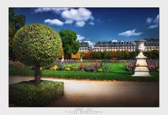 Tuileries Garden. Paris by Viktor Korostynski on 500px