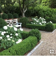42 inspiring ideas for lovely garden landscape design from our experts 10 Hydrangea Landscaping, Front Yard Landscaping, Landscaping Ideas, Hedges Landscaping, Acreage Landscaping, Farmhouse Landscaping, Tropical Landscaping, Landscape Designs, Garden Landscape Design