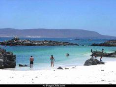 Playa Hornitos,Mejillones,Chile