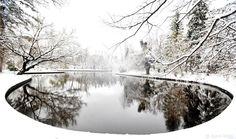 Winter in Bucharest, Cismigiu park Adventures In Wonderland, Through The Looking Glass, Bucharest, Time Of The Year, Optimism, Winter Time, Wonderful Time, Romania, Winter Wonderland