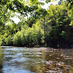 #Sunlit #River #Walk