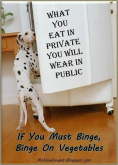dalmation #health advice