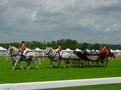 Her Majesty the Queen at Royal Ascot 2006 by otzberg, via Flickr