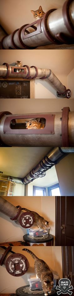 Cat Transit System - I'd use plastic instead, with scratching stations along the way up. Paint the PVC pipe to fit.