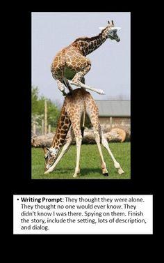 writing prompt: creative writing