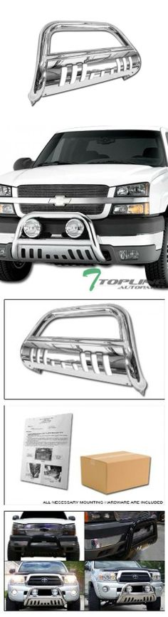 Stainless Bull Bar, but I would rather have matte black.