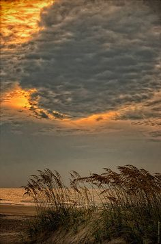 Warm cloudy sunrise on the marsh - Hunting Island State Park, SC