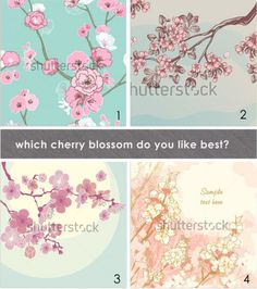 Which cherry blossom do you like best?