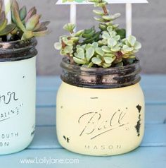 Simply Rustic Mason Jar Pots | A sweet and simple rustic DIY wedding centerpiece that wont break the bank.