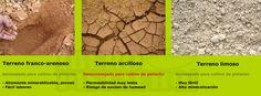 Tipos de suelo Pistachero