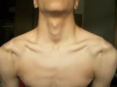 #adamsapple #adams #apple #guy #clavicles #collarbones #sexy #hot #tumblr #men #body #goal #jawline #jaw