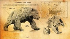 Cave bear with map, detail and text