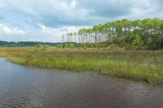 This image shows a portion of the Florida wetlands just north of Jacksonville near the Atlantic coast. Florida Images, Best Titles, Show Photos, Great Shots, Landscape Photographers, Image Shows, Fine Art America, Photo Art, Nature Photography