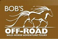 A tour to see wild horses...