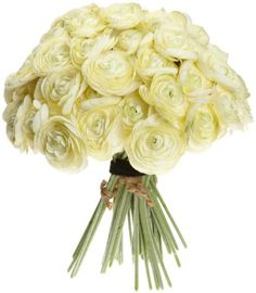 Sia Ranunculus, 12 Bundles of 6, Cream Yellow, 10.5-Inches Tall channel,http://www.amazon.com/dp/B0046H98T2/ref=cm_sw_r_pi_dp_07Dftb0AEVYAEHBV