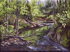 """Spring light on Stevensville Brook"" (SOLD) 6"" X 8"" Acrylic on Canvas  Plein air painting of spring light on Stevensville Brook #art, #LandscapeArt, #SceneryArt, #Vermont, #UnderhillVermont"