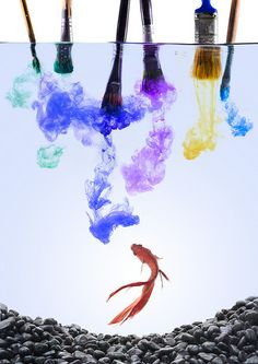 best photos 2 share: Cool Pictures of Ink in Water