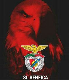 Big Love, First Love, Benfica Wallpaper, Image Fun, Team Logo, Portugal, Cool Stuff, Funny Things, Soccer