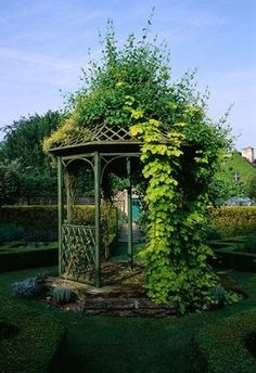 BANDSTAND IN THE HERB GARDEN COVERED WITH GOLDEN H...