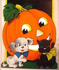 halloween - love the look on the cat's face!