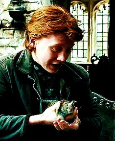 Ron's Rat ( WormTail ) --- kinda creepy when you think about it o. Buffy Episodes, Max Schneider, Welcome To Hogwarts, Harry Potter Gif, Rupert Grint, Prisoner Of Azkaban, Ron Weasley, Mischief Managed, Niall Horan