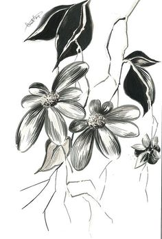 Abstract flowers ink drawing