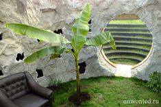 Патио в геодезическом куполе