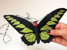 So life-like and rare, you'd almost think it's a crime to own one.    Yes, this Rahah Brooke's Birdwing Butterfly is listed as an endangered