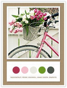 Colour Palette: passionfruit, peony, eggshell, grass green, graphite