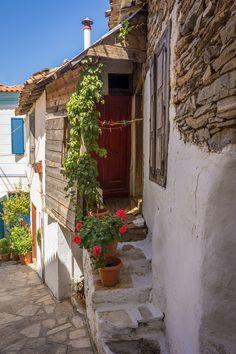 Life, Samos Island - Greece (via ioannisdg) Samos Greece, Santorini Greece, Corfu, Athens Greece, Great Places, Beautiful Places, Venice Travel, Greece Islands, Love Garden